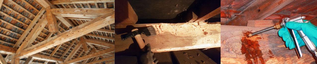 Traitements préventifs et curatifs des bois et charpentes