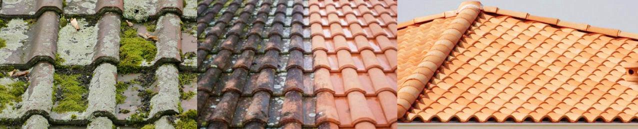 Traitements curatifs et préventifs de votre couverture et toitures