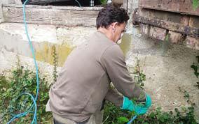 TERMISER Traitement Percage des murs pour injection de produit anti termites