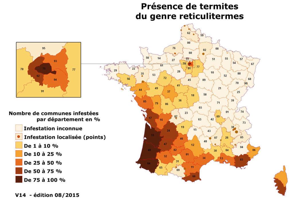 Présence de termites réticulitermes en France